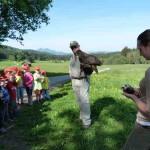 Kinder bewundern Uhu Walburga und das zahme Frettchen